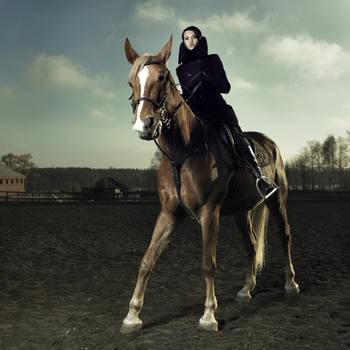 情侣骑马 手绘 古代