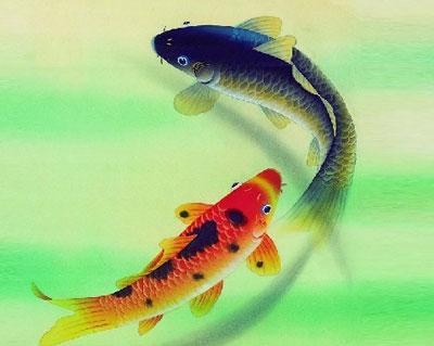 梦见鱼代表什么