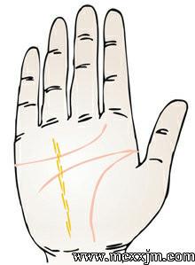 手掌纹路图解:太阳线、成功线、运势线