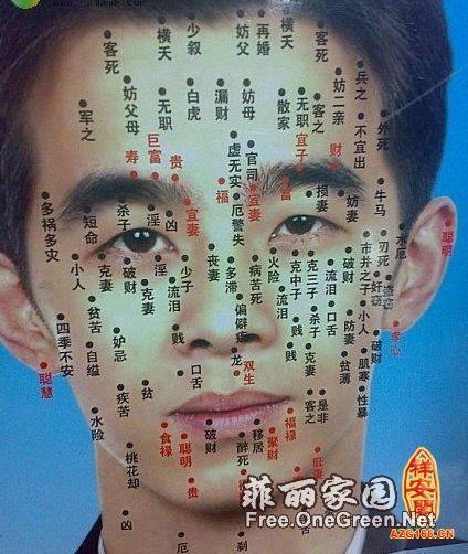 男人脸上长痣面相图解-脸上长痣面相图解