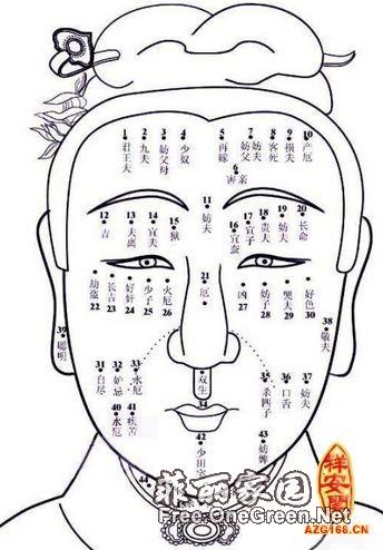手绘鼻子怎么画