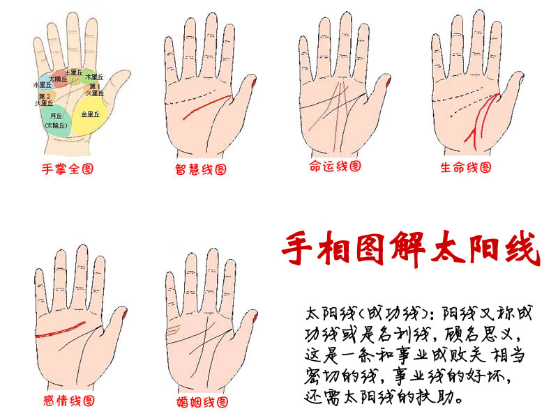 手掌纹路图解 太阳线 成功线 运势线 名利线