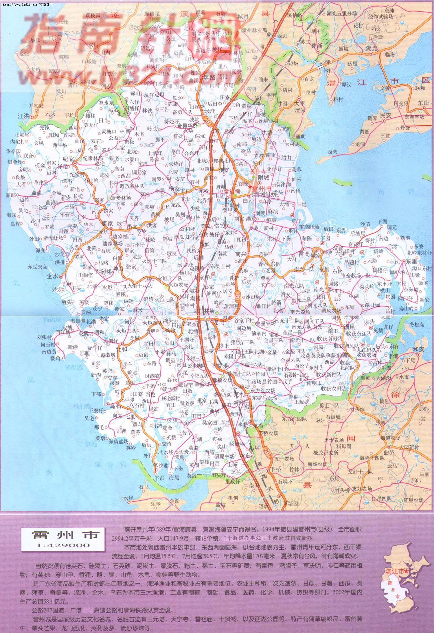广东省湛江市雷州市地图