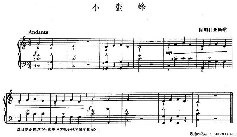 手风琴左手五线谱