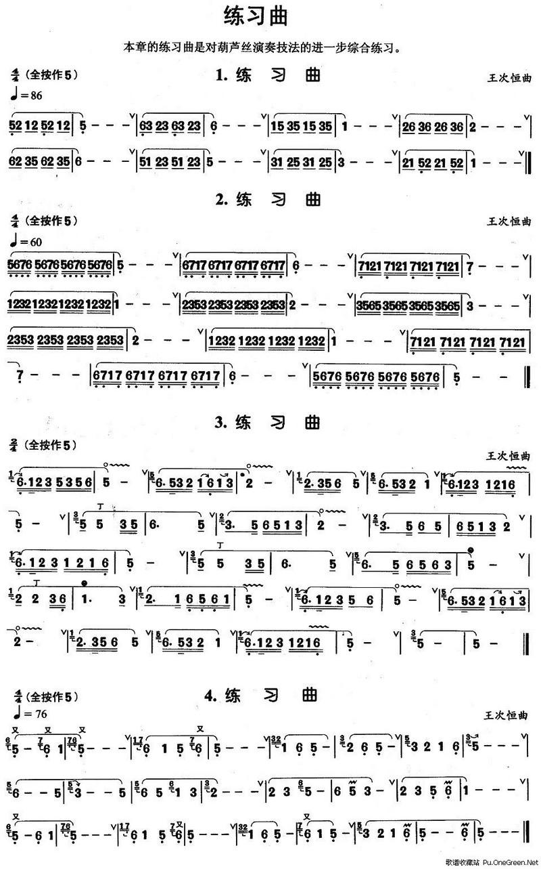 葫芦丝康定情歌曲谱展示