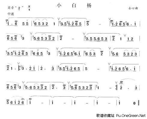 小白杨_佚名_歌谱收藏站