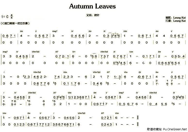 秋叶儿的简谱