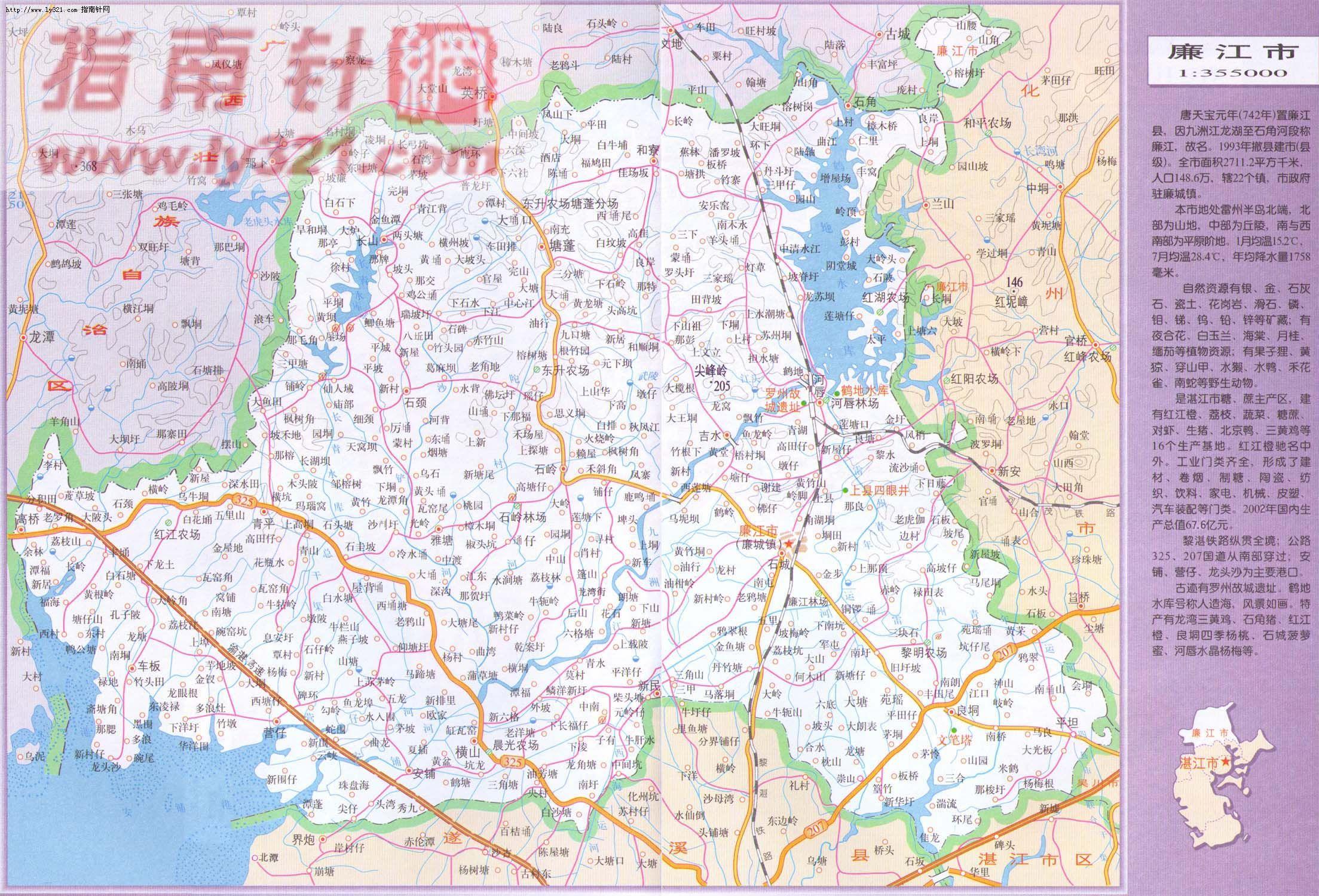 广东省湛江市廉江市地图