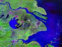 地图 行政区/长三角城市卫星影像图